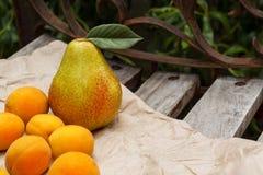 A cesta de fruto está no banco Fotos de Stock