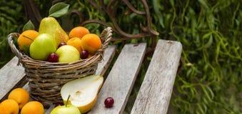 A cesta de fruto está no banco Imagem de Stock