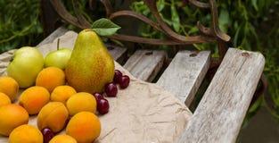 A cesta de fruto está no banco Fotos de Stock Royalty Free