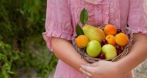 Cesta de fruto nas mãos da menina Fotografia de Stock Royalty Free