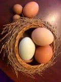 Cesta de huevos Foto de archivo