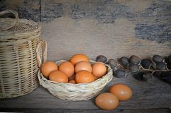 Cesta de huevos en la luz Fotos de archivo