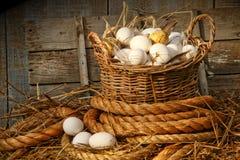 Cesta de huevos en la paja Imagenes de archivo