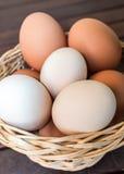 Cesta de huevos frescos Imagenes de archivo