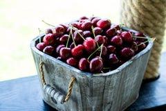 Cesta de la cereza Cherry Tree Branch Cerezas maduras frescas ch dulce Foto de archivo libre de regalías