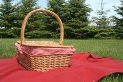 Cesta de la comida campestre Foto de archivo libre de regalías
