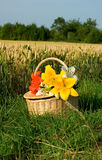 Cesta de la comida campestre con el manojo de flores Fotos de archivo libres de regalías