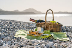 Cesta de la comida campestre con el vino, el queso y las uvas Imagen de archivo libre de regalías