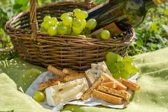 Cesta de la comida campestre con el vino, el queso y las uvas Fotografía de archivo libre de regalías