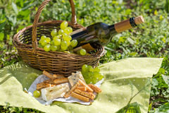Cesta de la comida campestre con el vino, el queso y las uvas Fotos de archivo libres de regalías