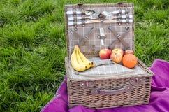 Cesta de la comida campestre con la comida en la manta fotografía de archivo libre de regalías