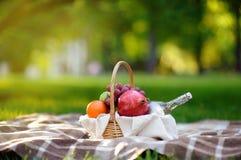 Cesta de la comida campestre con las frutas, la comida y agua en la botella de cristal Foto de archivo libre de regalías