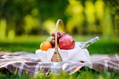 Cesta de la comida campestre con las frutas, la comida y agua en la botella de cristal Fotos de archivo libres de regalías