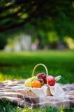 Cesta de la comida campestre con las frutas, la comida y agua en la botella de cristal Foto de archivo