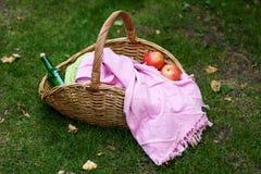 Cesta de la comida campestre con una manta, la botella de vino y las manzanas en hierba del otoño Imagen de archivo libre de regalías
