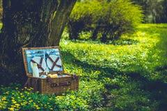 Cesta de la comida campestre en el bosque Imagen de archivo