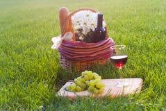 cesta de la comida campestre en la hierba Fotografía de archivo libre de regalías