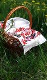 Cesta de la comida campestre Cesta de Pascua Lona bordada Dientes de le?n amarillos en hierba verde foto de archivo libre de regalías