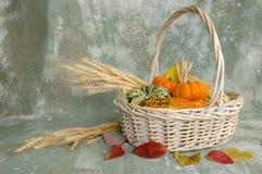 Cesta de la cosecha con las calabazas Imagen de archivo libre de regalías