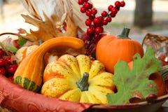 Cesta de la cosecha de la acción de gracias Imagen de archivo libre de regalías