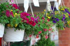 Cesta de la flor Imagen de archivo libre de regalías