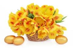 Cesta de la flor de Pascua Fotografía de archivo libre de regalías