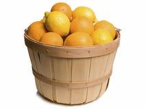 Cesta de la fruta cítrica Imagen de archivo