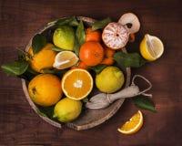 Cesta de la fruta cítrica todavía de Sicilia de vida Imágenes de archivo libres de regalías