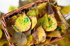 Cesta de la paja con de otoño todavía de las hojas vida amarilla y marrón Foto de archivo