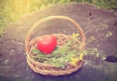 Cesta de la primavera con forma del corazón Fotografía de archivo