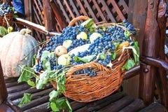 Cesta de las uvas frescas 3 Fotografía de archivo