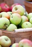 Cesta de maçãs verdes fotografia de stock