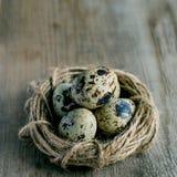 A cesta de madeira encheu-se com os ovos das codorniz Fotografia de Stock