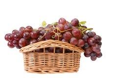 Cesta de madera hermosa y uvas maduras. Imagen de archivo libre de regalías