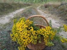 Cesta de madera muy bonita llenada de las flores amarillas imágenes de archivo libres de regalías