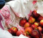 Cesta de manzanas Fotografía de archivo