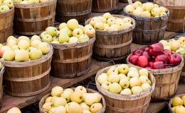 Cesta de manzanas en el soporte de la granja Fotografía de archivo