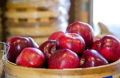 Cesta de manzanas rojas jugosas de Michigan Fotos de archivo libres de regalías