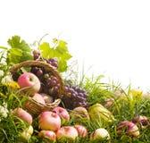 Cesta de manzanas y de uvas en la hierba Imagen de archivo libre de regalías