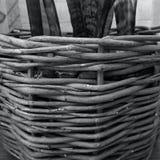 Cesta de mimbre Imagen de archivo