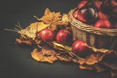Cesta de mimbre con las manzanas, blackbackground del otoño de las hojas Foto de archivo libre de regalías