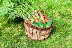 Cesta de mimbre de madera con las zanahorias anaranjadas frescas y el cucumbe verde foto de archivo