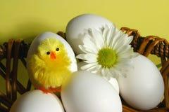 Cesta de Pascua Imagenes de archivo