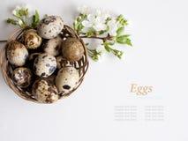 Cesta de Pascua con los huevos de Pascua en el fondo blanco fotos de archivo
