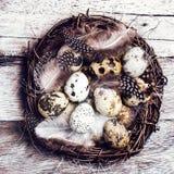 Cesta de Pascua con los huevos de Pascua en fondo de madera. Easte de las codornices Fotos de archivo libres de regalías