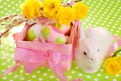 Cesta de Pascua con los huevos y el conejito blanco Fotografía de archivo libre de regalías
