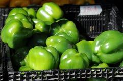 Cesta de pimientas verdes Foto de archivo