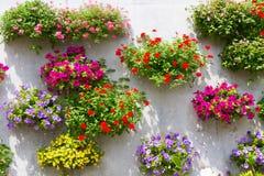 Cesta de suspensão na parede, completa das flores imagem de stock