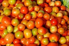 Cesta de tomates Fotografía de archivo