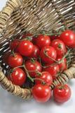 Cesta de tomates orgánicos rojos Imagenes de archivo